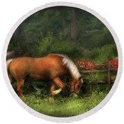 Farm - Horse - In The Meadow Round Beach Towel