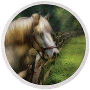 Farm - Horse - White Stallion Round Beach Towel