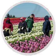 Farm Workers In Tulips Round Beach Towel