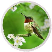 Fauna And Flora - Hummingbird With Flowers Round Beach Towel