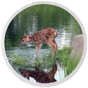 Fawn At The Water Hole Round Beach Towel