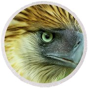 Fearless Philippine Eagle Round Beach Towel