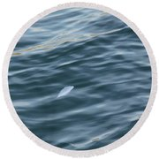 Feather From Heaven Round Beach Towel