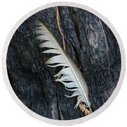 Feather In Burnt Tree Round Beach Towel
