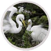 Feathering Their Nest Round Beach Towel