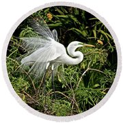 Beautiful Feathers And Foliage Round Beach Towel