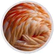 Feathers Of Pink Round Beach Towel