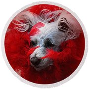Feathers Of Red Round Beach Towel