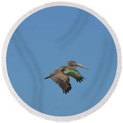 Feathers On A Pelican Wings Flapping In Flight Round Beach Towel