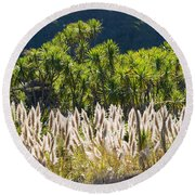 Feathery White Plants Round Beach Towel