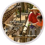 Feeding Giraffe 3a Round Beach Towel