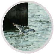 Feeding Time In Ephraim Wi Round Beach Towel