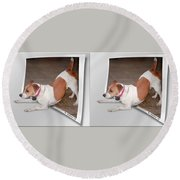 Feeling Frisky - Cross Your Eyes And Focus On The Middle Image Round Beach Towel