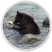 Feasting Bear Round Beach Towel