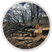 Felled After The Wildfire Round Beach Towel