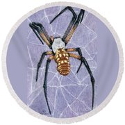 Female Orb Spider Round Beach Towel