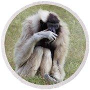 Female Pileated Gibbon, Gladys Porter Zoo Round Beach Towel