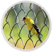 Fence And Feathers Round Beach Towel