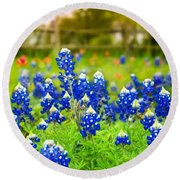 Fence Me In With Flowers Round Beach Towel