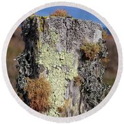 Fence Post Encrusted With Lichen  Round Beach Towel