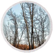 Fenced In Landscape Round Beach Towel