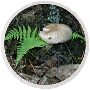 Fern And Mushroom Round Beach Towel