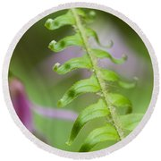 Fern Frond Round Beach Towel