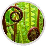 Fern Fronds Fine Art Photography Forest Ferns Green Baslee Troutman Round Beach Towel