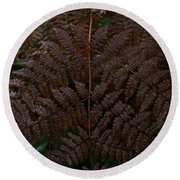 Fern Kaleidescope Round Beach Towel