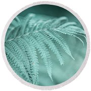 Fern Leaves Abstract 1. Nature In Alien Skin Round Beach Towel