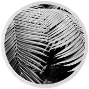Fern Room Cycads Round Beach Towel