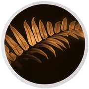 Fern Zen Round Beach Towel