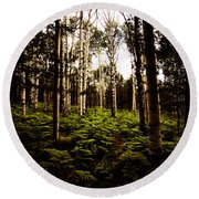 Ferns And Aspen Round Beach Towel