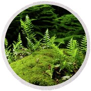 Ferns And Moss On The Ma At Round Beach Towel