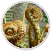 Ferns Art Print Forest Fern Artwork Canvas Baslee Troutman Round Beach Towel