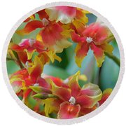 Festive Orchids Round Beach Towel