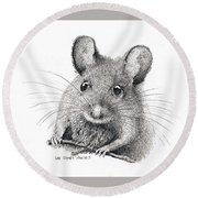 Field Mouse Or Meadow Vole Round Beach Towel