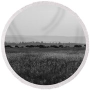 Field Of American Bison Bw Round Beach Towel