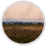 Field Of American Bison  Round Beach Towel