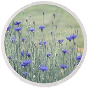 Field Of Bachelor Buttons Round Beach Towel
