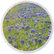 Field Of Blue Bonnet Flowers Round Beach Towel
