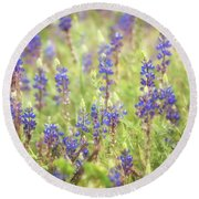 Field Of Blue Lupines  Round Beach Towel