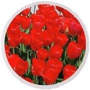 Field Of Brilliant Red Tulip Flowers In A Garden Round Beach Towel