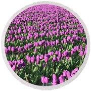 Field Of Purple Flowers Round Beach Towel