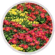 Field Of Red And Yellow Flowers Round Beach Towel