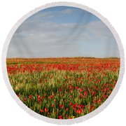 Field Of Red Poppy Anemones Late In Spring  Round Beach Towel