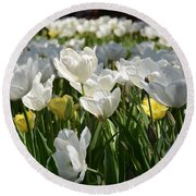Field Of White Tulips Round Beach Towel