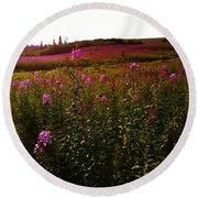 Fields In Pink Round Beach Towel
