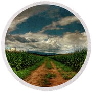 Fields Of Summer Round Beach Towel
