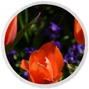 Fiery Colored Tulips Round Beach Towel